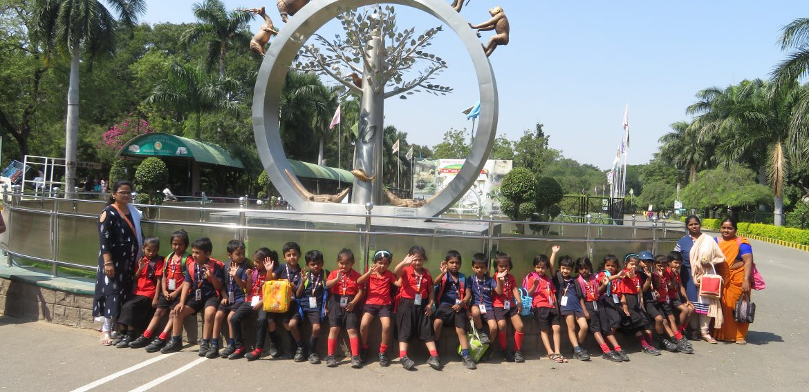 Pre-Primary Field Trip to Zoo